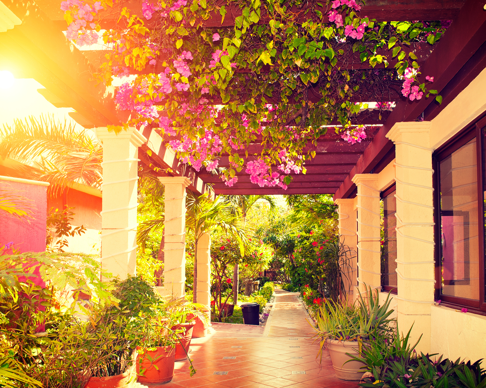 Find a house to rent in san miguel de allende mexico